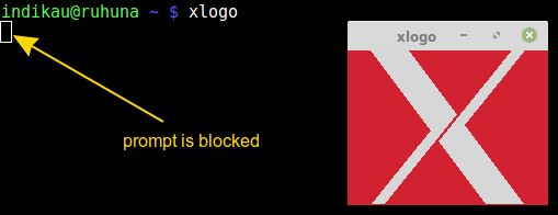 xlogo blocked command line